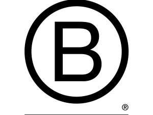 Our first year as a BCorp