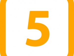 5 Rules of Business (Stewart Butterfield)